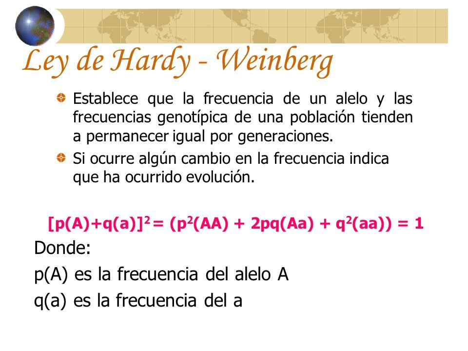 [p(A)+q(a)]2 = (p2(AA) + 2pq(Aa) + q2(aa)) = 1